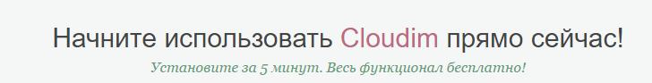 Купить и установить русскоязычный онлайн чат поддержки на сайт.